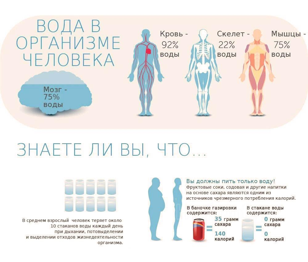 Вода в организме человека, знаете ли вы...