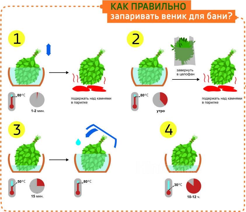 Инфографика, как правильно запаривать веник для бани.