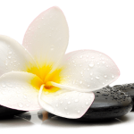 «Shilova nails» салон красоты